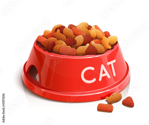 bowl with cat feed vector illustration isolated on white