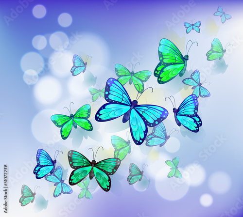 Poster Vlinders Butterflies in a stationery
