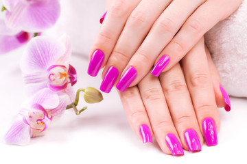 beautyful manicure with fragrant orchid and towel. Spa