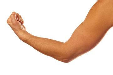 Man's muscular arm