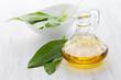 frisches Bärlauchöl / fresh ramson oil