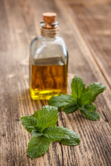 Bottle with mint oil