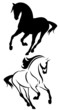 beautiful running horse vector outline and silhouette