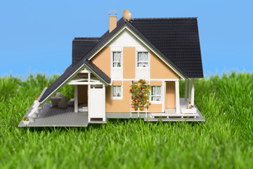 Prestige Haus im grünen mit bauen Himmel