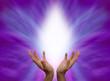 Healing Hands 563