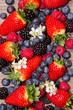 Obrazy drukowane na płótnie, fototapety, zdjęcia, fotoobrazy cyfrowe : Berries
