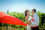 Bride and groom on the background of vineyards