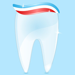 tooth of white color and tooth-paste