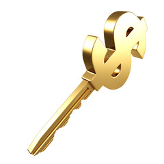 golden key with dollar sign on white