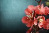 Różowe kwiatki - 51101089