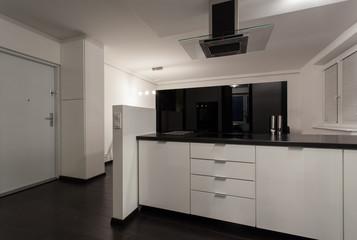 Minimalist apartment - open kitchen