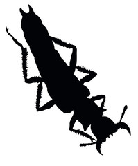 Bug vector silhouette isolated