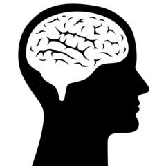Menschlicher Kopf im Profil mit Gehirn – Vektor und freigestellt