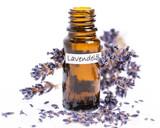 Fototapety Lavendelöl mit Blüten auf weißem Hintergrund