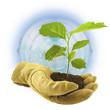 concept protection de la planète