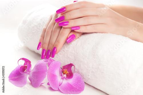 Fototapeten,manicure,orchidee,kurort,hand