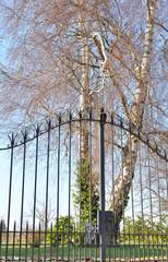 portail devant jardin arboré