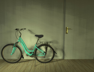 Bicycle in the living room