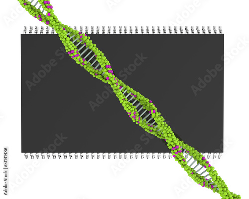 DNA microprocessors