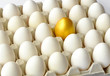 Golden egg among hen eggs in pack