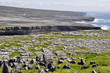 Inishmore, Aran islands in Ireland