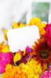 Beautiful bouquet of bright flowers with paper note close-up