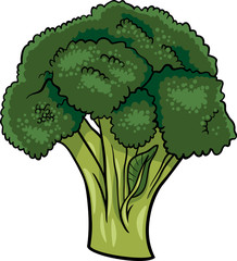 broccoli vegetable cartoon illustration