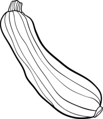zucchini vegetable cartoon for coloring book