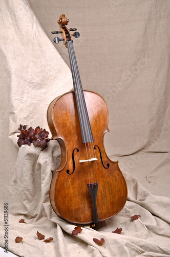 cello in beige background