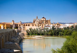 View on Mezquita Cathedral (The Great Mosque) in Cordoba, Spain.