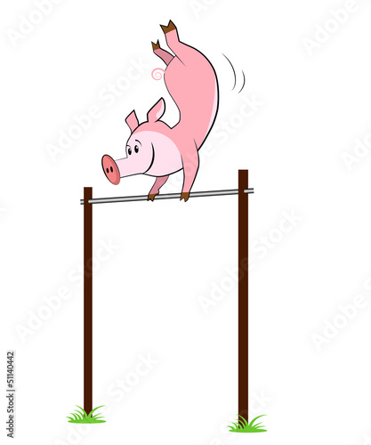Illustration of isolated pig hangs on a horizontal bar