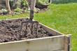 bêche plantée dans un carré de potager