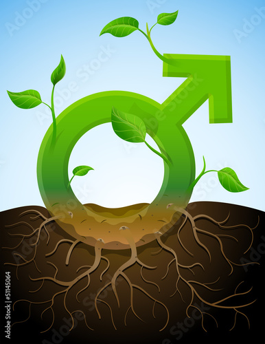 Growing male symbol like plant with leaves and roots in ground