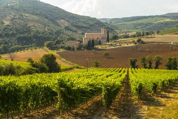 Sant'Antimo (Tuscany)