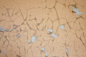 Wandfarbe mit Wasserschaden