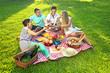 Friends having a picnic - 51152885
