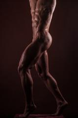 Male legs