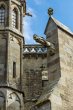 Gargoyle on the cathedral Saint-Nazaire