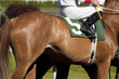 Jockey Leads Number Five Horse to Start Gate at Racetrack