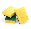 Yellow sponges