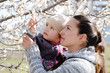 woman with child near the blossom tree