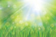 Vector of spring background, sky and green grass.