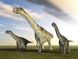 Dinosaurier Camarasaurus