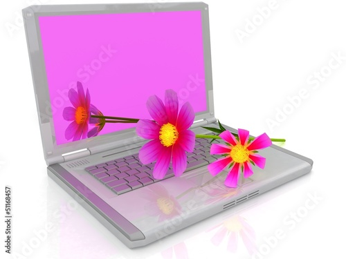 notebook and cosmos flower on white background