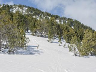 ladera nevada en alta montaña