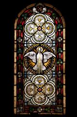 Taube Glasfenster Sachsen