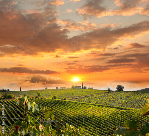 Chianti, famous vineyard in Italy - 51174897