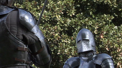 medieval fighting 14