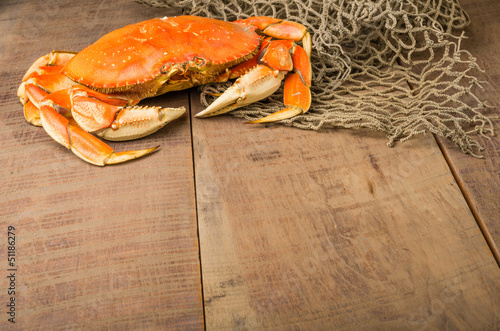 Dungeness crab ready to cook