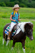 Ranch, horse riding - portrait of lovely girl on a pony